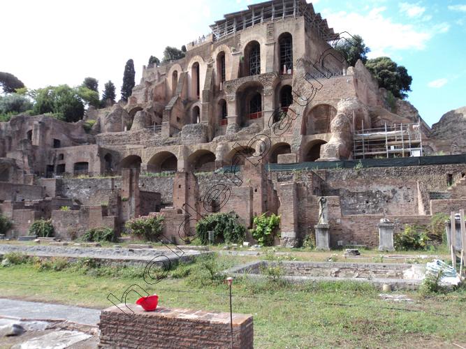 Pedro Holderbaum Forum Romano 20 cópia