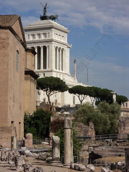 Pedro Holderbaum Forum Romano 4 cópia