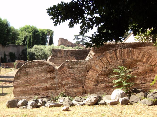 Pedro Holderbaum Palatino . Roma 18 cópia