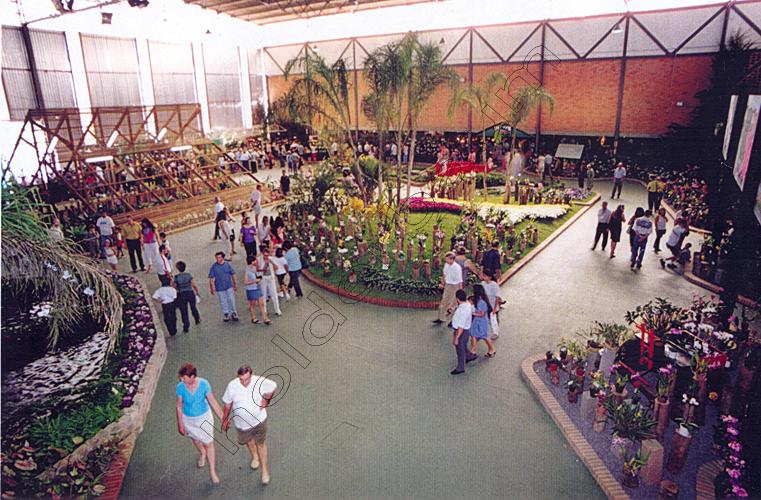 Pedro Holderbaum Festa das Flores Joinville 12 cópia