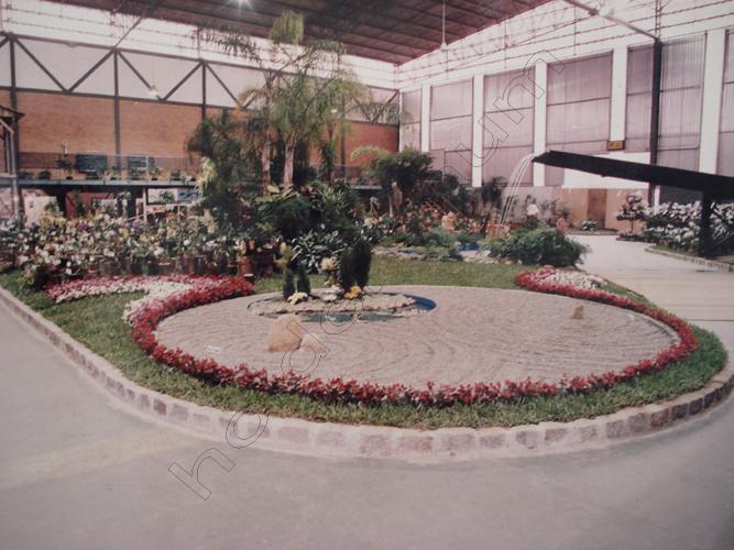 Pedro Holderbaum Festa das Flores Joinville 2 cópia