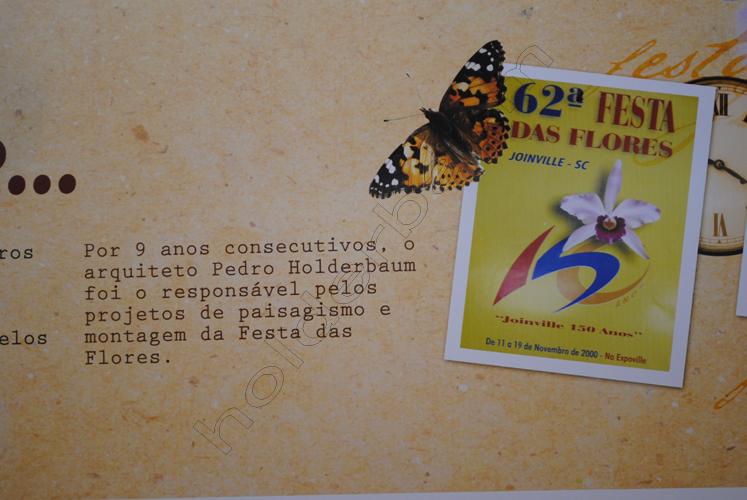 6Unforgettable 4 - Festa das Flores - Tribute - Joinville Brasil copy