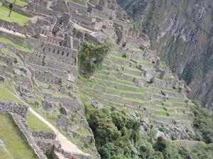 7Machu Pichu 7 - Peru DSCN8102