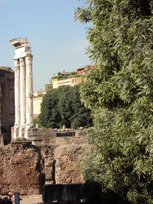 pedro-holderbaum-forum-romano-3-cc3b3pia