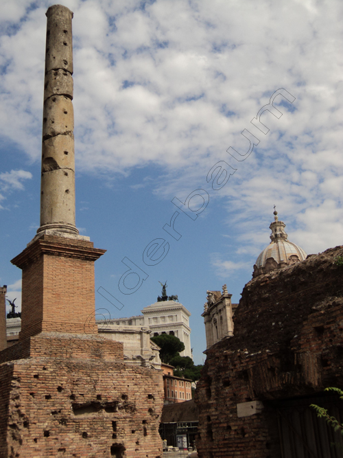 pedro-holderbaum-forum-romano-10-cc3b3pia