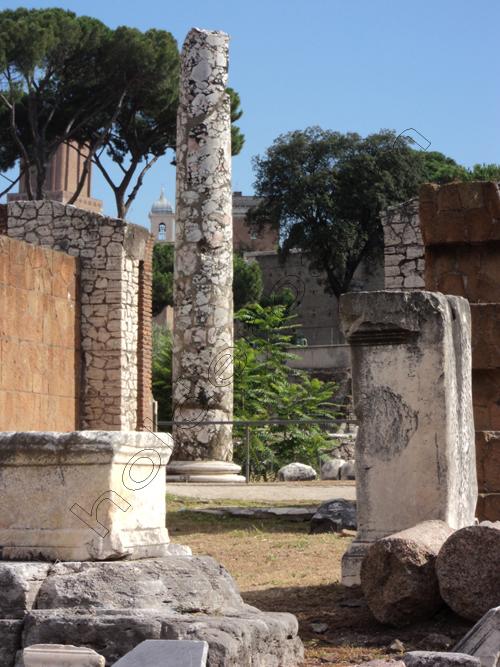 pedro-holderbaum-forum-romano-7-cc3b3pia
