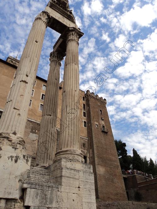ypedro-holderbaum-forum-romano-13-cc3b3pia
