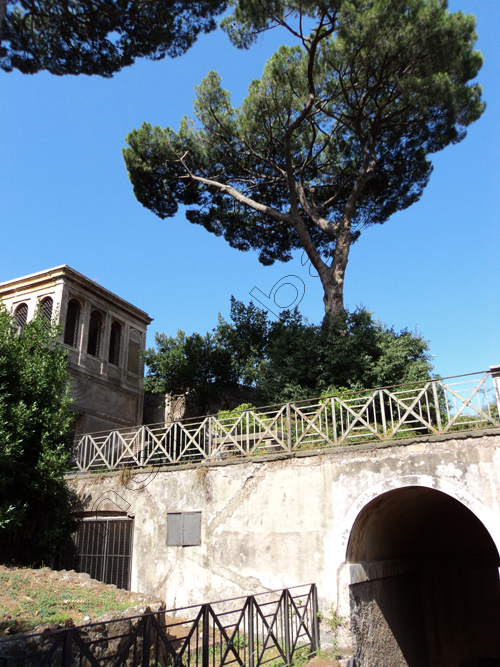 pedro-holderbaum-palatino-roma-5-cc3b3pia