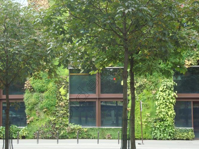 y1pedro-holderbaum-branly-paris-19-cc3b3pia