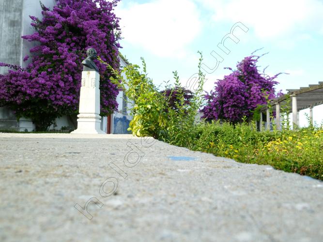 pedro-holderbaum-lisboa-beauty-11-cc3b3pia