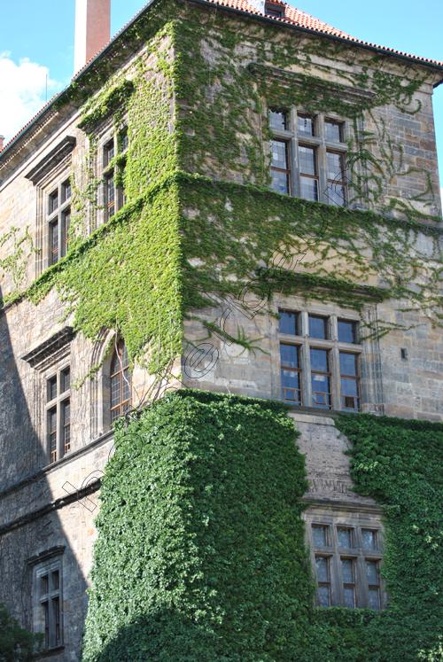 pedro-holderbaum-prague-castle-17-cc3b3pia