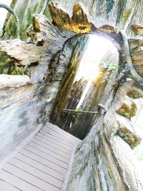 pedro-holderbaum-palmenhaus-14-cc3b3pia