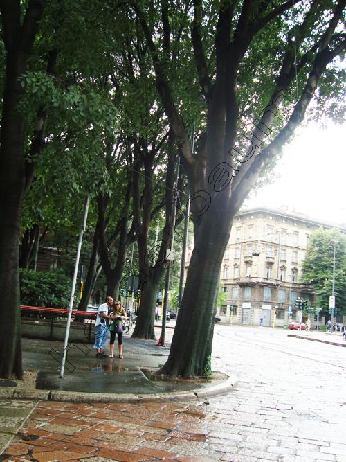 pedro-holderbaum-milano-people-9-cc3b3pia