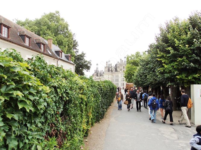 pedro-holderbaum-chateau-de-chambord-green-1-cc3b3pia