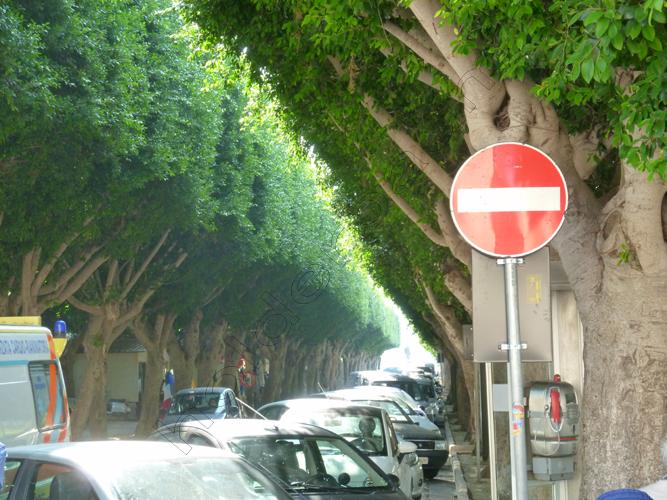 13noto-1-sicilia-copy