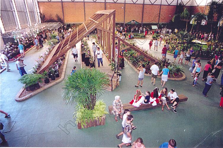 pedro-holderbaum-festa-das-flores-joinville-11-cc3b3pia